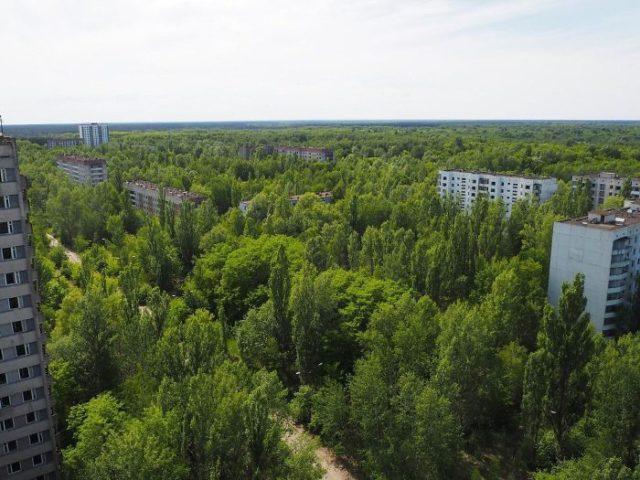 Фото Чернобыля сейчас - спустя больше 30 лет 8