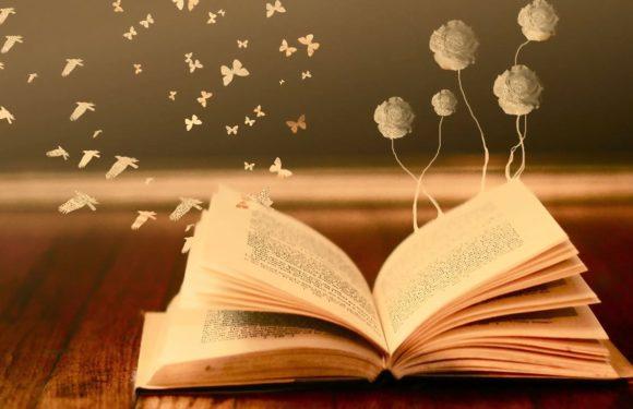 Топ-10 современных книг, которые стоит прочитать