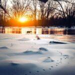 Удивительные снимки Логана Брауна (Logan Brown): природа во всей красе 6