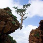 Фото природы, которая способна удивлять! 3