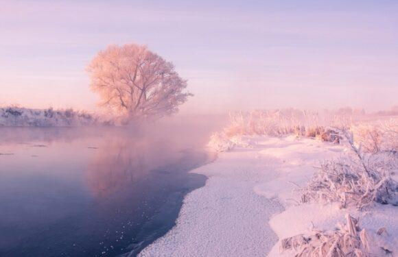 Зимние белоснежные пейзажи: завораживающие фото Алексея Углальникова